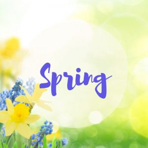 Spring SVG Cutting Files