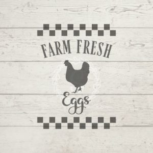 farm-fresh-eggs-product-download